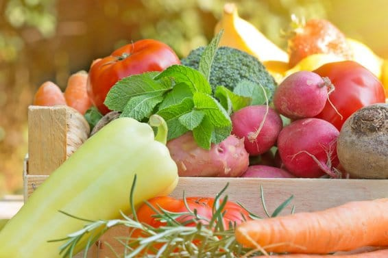 Gesunde Ernährung oder Zwang?