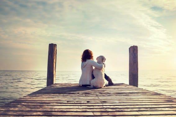 Tiere helfen bei Depressionen